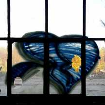 Fenster-Graffiti