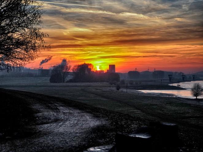 Rheinwiese bei Duisburg-Beeckerwerth