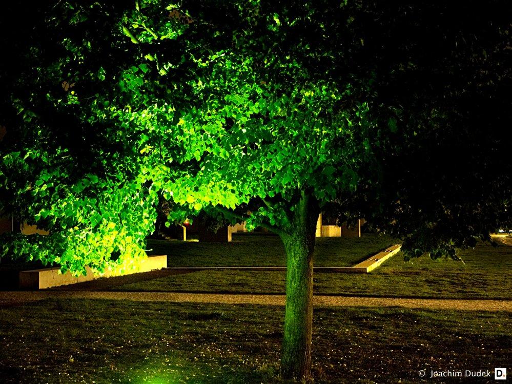Garten der Erinnerung