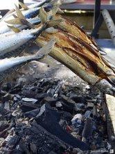 Gegrillter Fisch I
