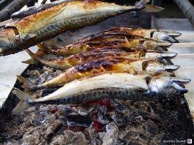 Gegrillter Fisch II
