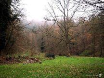 An der Ringelsteiner Mühle