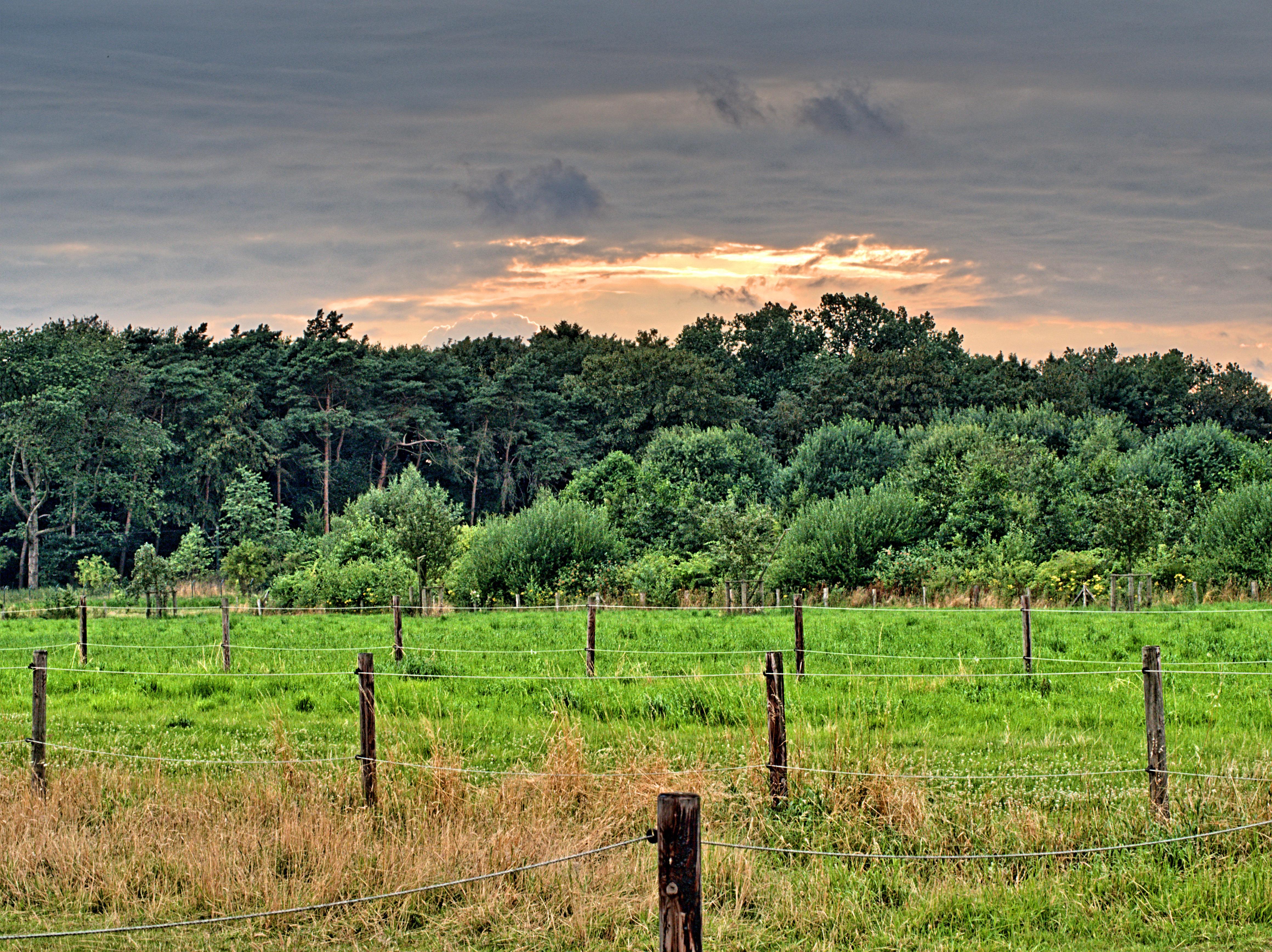 Landschaft im Duisburger Süden